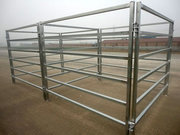 Corral Panels are Strong Enough to Protect Livestock